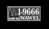 biale-logo6